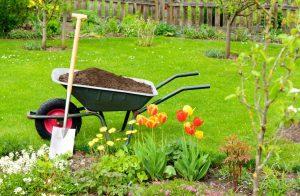 Best Compost for Garden