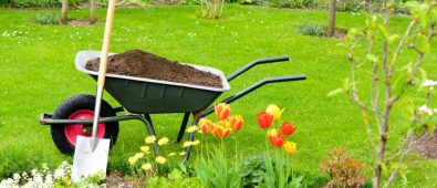 Best Compost for Garden