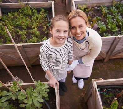How to build an above ground Garden