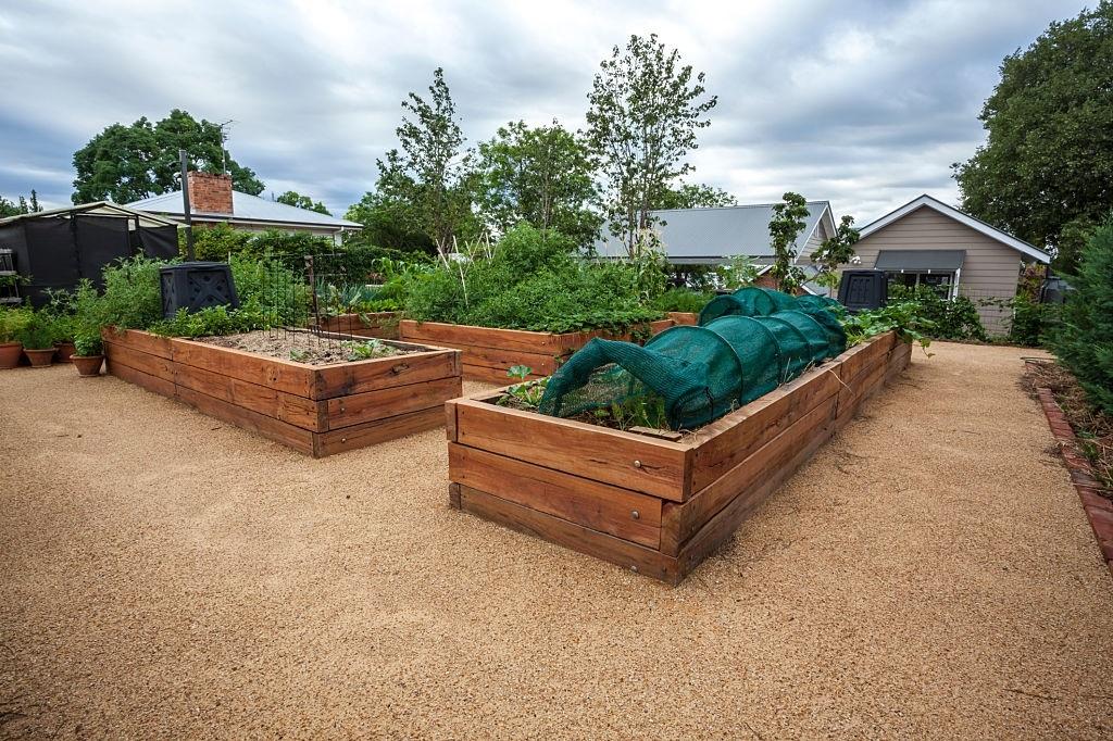 above ground Garden