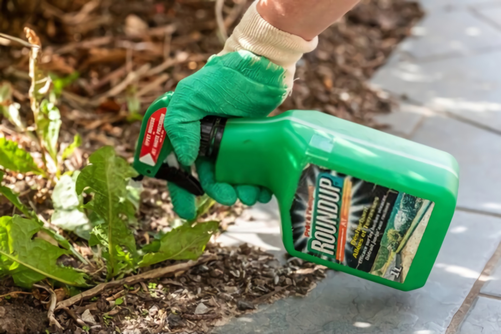 10 Best Weed Killer For Gardens 2020