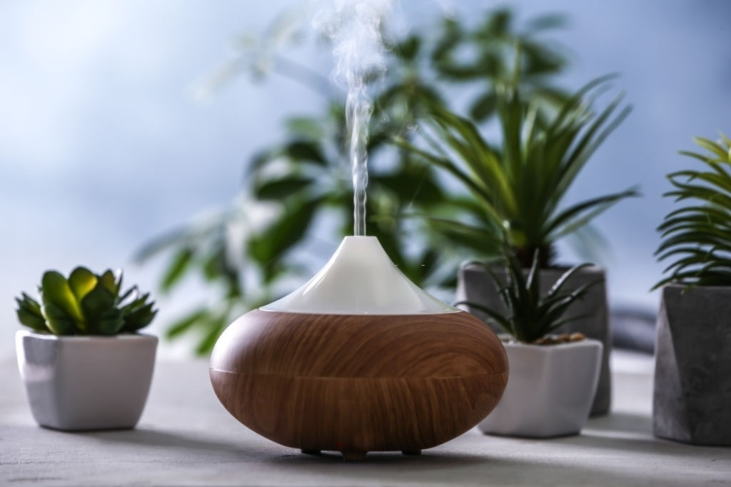 Humidifier-For-Plants-2020-Reviews