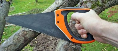 10 Best Hand Saw for Cutting Trees Reviews