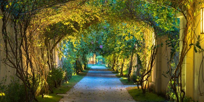 10 Best Solar Walkway Lights