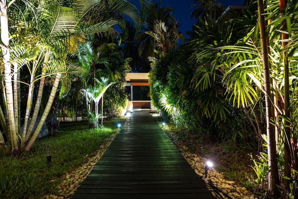 10 Best Solar Walkway Lights Reviews