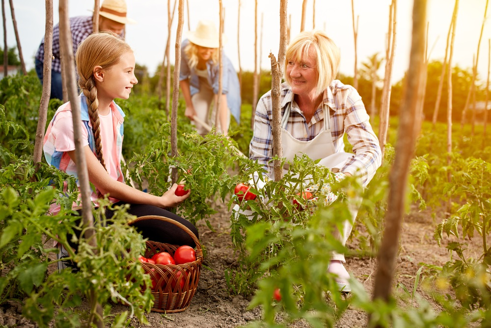 family-farmers