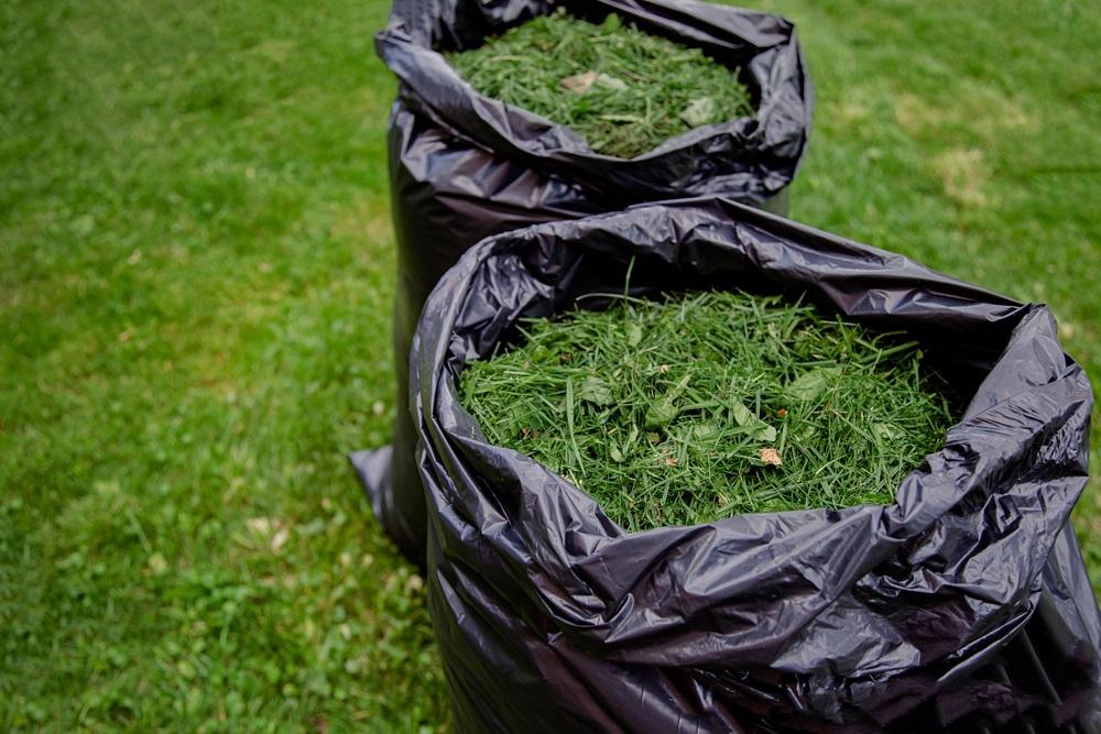 Best Mulching Lawn Mowers