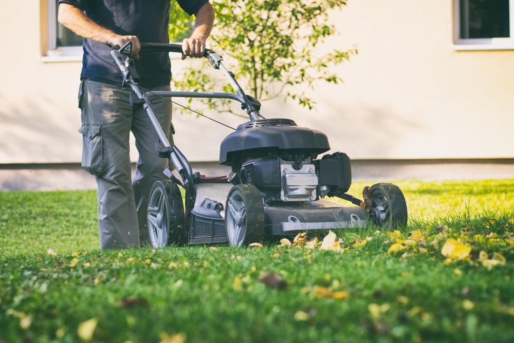 Best Mulching Lawn Mowers Reviews