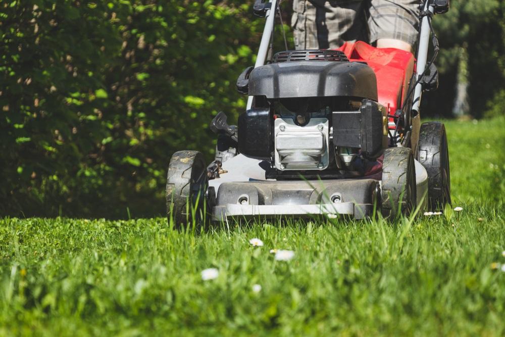 top 10 Best Mulching Lawn Mowers