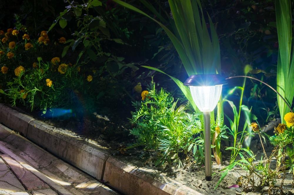 10 Best Solar Path Lights Reviews