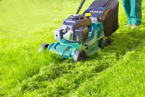 top 10 Best Mulching Lawn Mowers Reviews