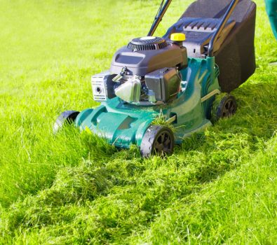 top 10 Best Mulching Lawn Mowers Reviews